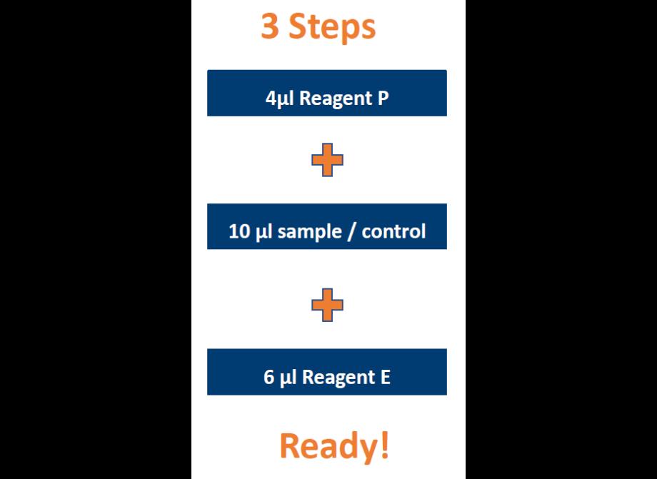3 step protocol