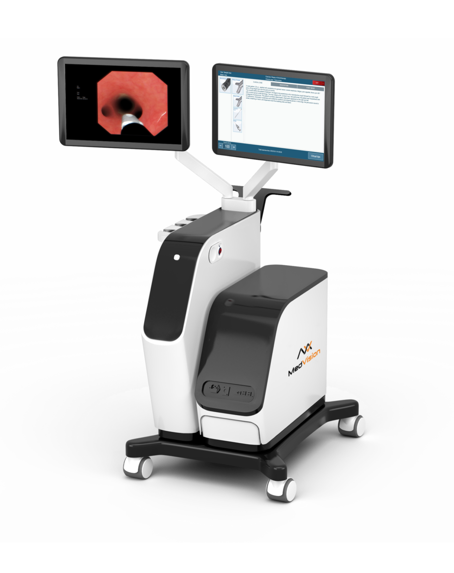 EndoVision simulator beauty